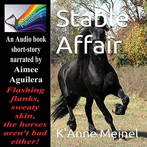 Stable Affair audiobook cover art