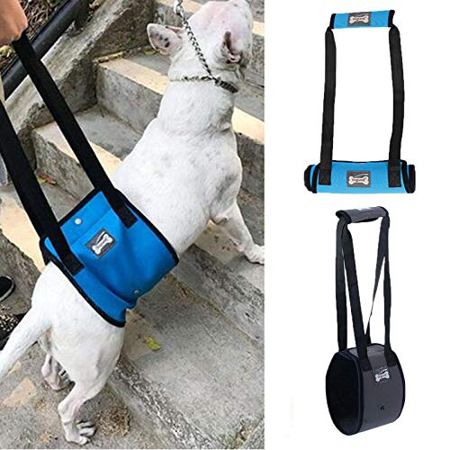 PENIVO 4 Sizes Dog Lift Support Harness Walking Vest Canine Aid Assist Sling Climb Stairs Rehabilitation for Canine Assist Elderly Sick Injured Support Sling Helps Dogs Legs (M, Blue)