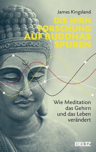 Die Hirnforschung auf Buddhas Spuren: Wie Meditation das Gehirn und das Leben verändert