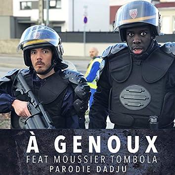 À Genoux (Parodie Dadju)