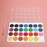 Watercolor Pigment Solid Watercolor Pigment Watercolor Paint Set Solid for Artist(28 Colors)