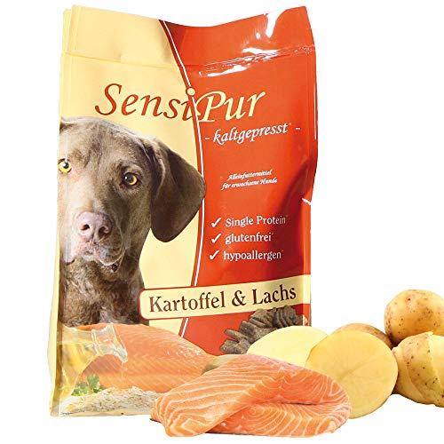 Schecker SensiPur® 1 x 12 kg Kartoffel und Lachs für den Hund - kaltgepresst optimales Trockenfutter Adulte Hunde glutenfrei hypoallergen Getreidefrei
