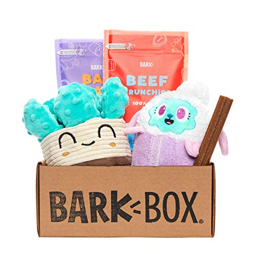 BarkBox Monthly Subscription Box