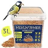 EWL Naturprodukte Mehlwürmer getrocknet 5ltr, der ideale gesunde proteinreiche Premium Insektensnack für Vögel, Fische, Schildkröten, Nager und Reptilien