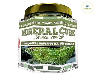 NatureHolic - MineralCube 'Spinat Power' - 47ml - Mineralversorgung + Ferienfutter