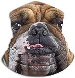 Miedhki Bulldog Gesicht Hals Gamasche Wärmer Männer Frauen Winddicht Hals Heizung Wrap für Winter Outdoor Sports