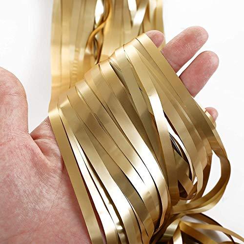 LIHAO 2 Stück Lametta Vorhänge Folie Fringe Tinsel Fransen Vorhang Schimmer Glitzervorhang Metall Folie Vorhang Girlande für Party Gerburtstag Hochzeit 3M Champagnerfarbe