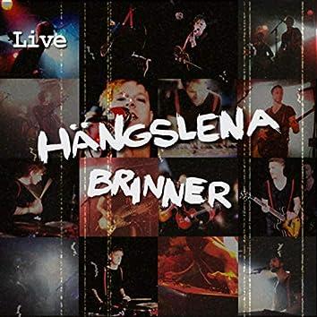 Hängslena Brinner (Live)