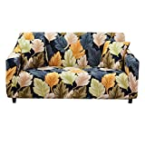 HOTNIU Stretch Sofa Cover Printed Couch Covers for 2 Cushion Couch Slipcovers for Sofas Loveseat Armchair Elastic Universal Furniture Protector with One Free Pillowcase (2 Seat, Fallen Leaves)