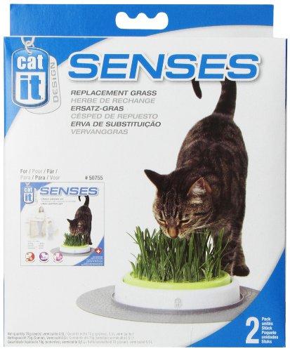catit 50777 Design Senses Erba del Giardino Ricarica da 2 Pacchetti