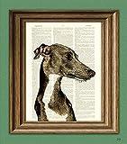 Italian Greyhound Dog Beautifully Upcycled...