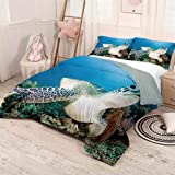 HELLOLEON Turtle Pure Bedding Hotel Luxury Bed Linen Photo of Green Turtle and Lion Fish on Tropical Coral Reef Chelonia Snorkeling Polyester - Soft and Breathable (King) Blue Green White