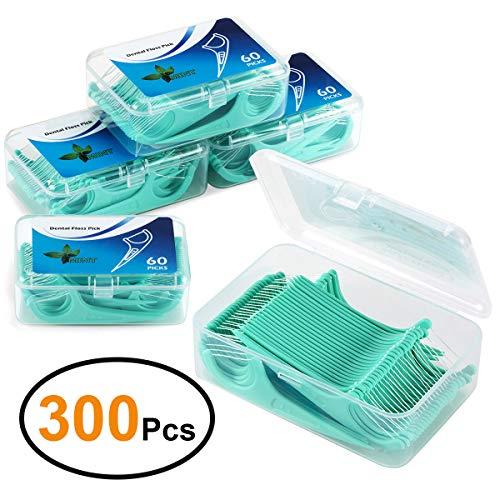 LAOYE Fil Dentaire 300 PCS Porte fils Dentaire,...
