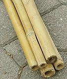 Cañas De Bambu en Ikea Catálogo On line Top 15