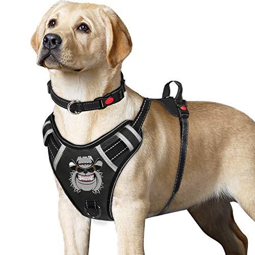 Tianyao Hundegeschirr zum Ziehen, reflektierendes und verstellbares Oxford-Material für extra große Hunde (inklusive Hundeleine und Halsband)