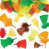 Baker Ross Plumes aux Couleurs d'automne (Paquet de 120) - Loisirs Créatifs et Décorations pour Enfants