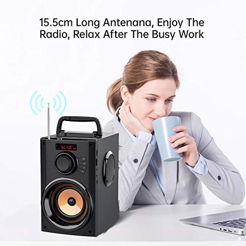 EIFER Portable Bluetooth Speaker with Subwoofer Rich Bass Wireless Stereo Outdoor/Indoor Party Speakers Support Remote Control FM Radio TF Card LCD Display for Home Party Smartphone Computer PC (B12)