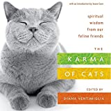 Karma Of Cats