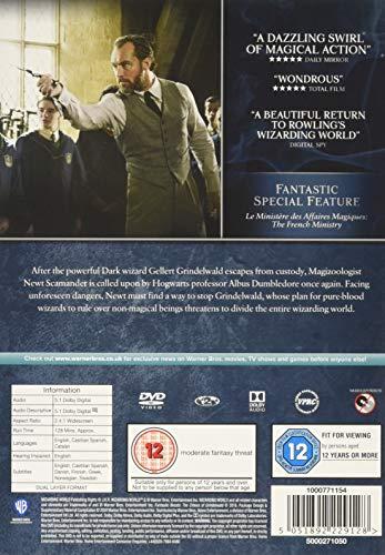 Fantastic Beasts: The Crimes of Grindelwald [DVD] [2020]
