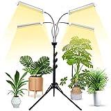 wsed plant grow light full spectrum 10 dimmable luminosità plants grow lamp regolabile 3 modalità di commutazione con lampadine stand per piante da giardino giardino greenhouse