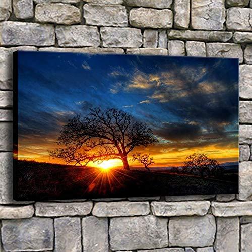 wZUN Pintura de Paisaje Natural en la decoración de la Pared y Tipo de impresión en Lienzo Hermoso árbol de la Tierra Imagen de Puesta de Sol 50x70cm