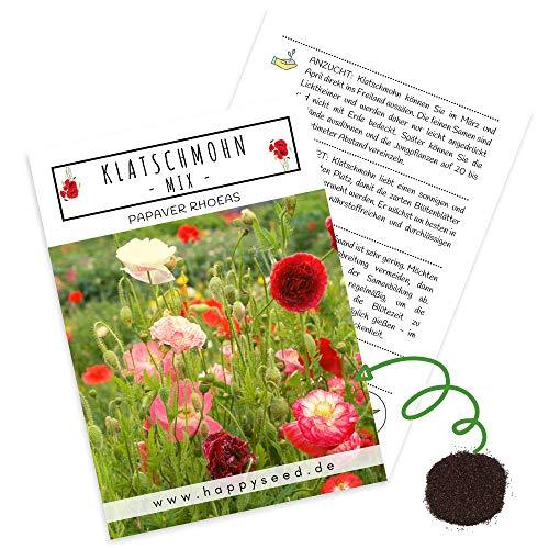 Klatschmohn Samen (Papaver rhoeas) - Wunderschön blühende Mohnblumen mit langer Blütezeit für eine bunte Blumenwiese (Mix)