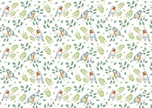 ARTEBENE Geschenkpapier Geschenkpapierbogen Geschenkpapierrolle Bogen Verpackung Vogel