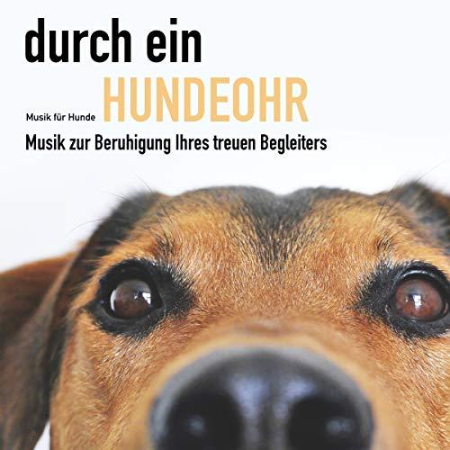 Durch ein Hundeohr - Musik für Hunde Titelbild