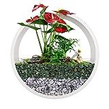 Jarrón de pared para colgar en la pared, maceta redonda de metal, soporte de plantas geométricas de pared, contenedor vertical para plantas suculentas cactus y más (blanco, L)