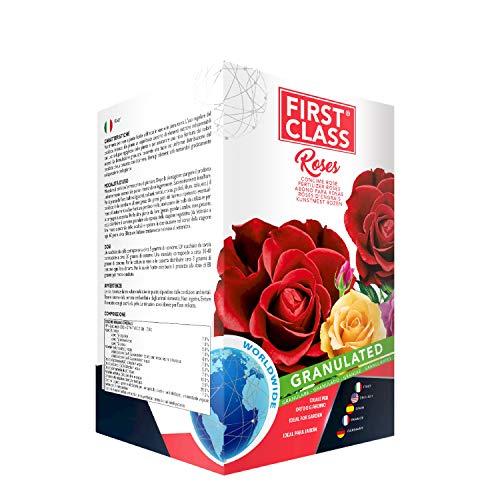 Firstclass Concime Fertilizzante Granulare Specifico per Rose | Ricca Fioritura | Colori più Intensi | Sviluppo Rigoglioso | Offerta Barattolo Richiudibile da 2 kg