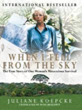When I Fell From the Sky PDF