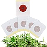 LMNH Hokuto Patches, 30pcs Magnetic Body Shaping Patch Sticker, Mugwort Navel Paste, Night Fat Burner, Beer Belly, Abdominal Fat