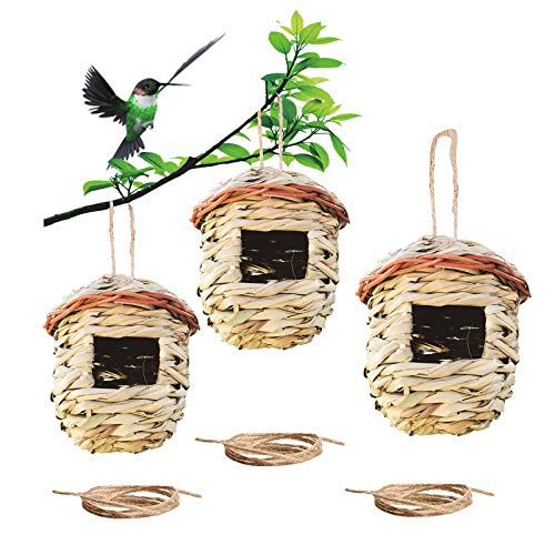 Emalie Humming Bird House, Hummingbird Nesting Houses Outside, Hanging...
