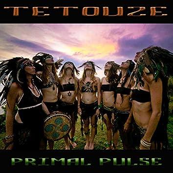 Primal Pulse