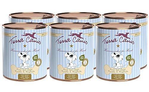 Terra Canis Welpen Nassfutter I Reichhaltiges Premium Hundefutter in echter Lebensmittelqualität mit Rind, Apfel, Hagebutte & Karotte I 6 x 800g, allergenarm, getreidefrei & glutenfrei