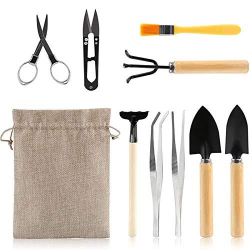 LZQYH Bonsai tool set, 10-piece mini gardening tool set, succulent cactus planting maintenance training cleanup, child woman portable gardening tool shovel paw