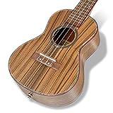 Immagine 2 hricane ukelele da concerto ukulele