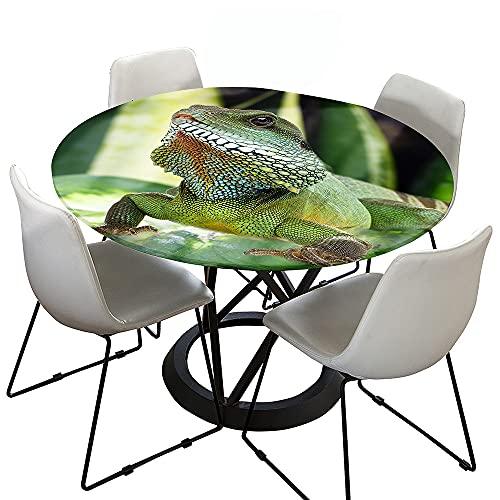 FANSU Impermeable Redondo Mantel con Borde Elástico, 3D camaleón Impresión Mantel de Mesa Elástica Ajustada Cubierta de Mesa para Picnic Comedor Cocina Restaurante Cena (Diámetro 150cm,Verde Oscuro)