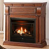 Duluth Forge FDF300R Dual Fuel Ventless Fireplace-26,000 BTU, Remote Control, Chestnut Oak Finish