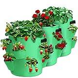 CAVEEN 3PCS x 7Galones Bolsas de Cultivo de Fresa, 26.5L, 8 Bolsillos Laterales de Cultivo, Bolsa de Cultivo de Plantas, Tela no Tejida Bolsa para Plantar con Asas para Flores, Fresas y Hierbas