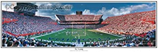 SportPicturesOnline Florida Gators The Swamp - NCAA Collage Football Panoramic Poster #5038