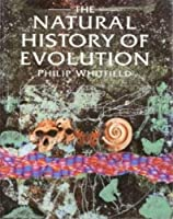 The Natural History of Evolution 0385403887 Book Cover