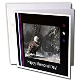 3dRose Memorial Day, Eagle by Waterfall - Greeting Cards, 6 x 6 inches, set of 12 (gc_40482_2)