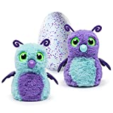 Hatchimal Exclusive Burtle Purple/Teal