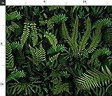 Spoonflower Stoff – Farn Botanische tiefschwarz grüne