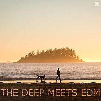 The Deep Meets EDM