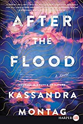 Cover of After the Flood: A Novel
