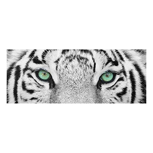 Bilderwelten Top Tiere Glasbilder Wandbild Foto Kunstdruck 30 x 80 cm, Weißer Tiger