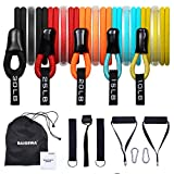 BAIGEWA Resistance Bands, 2021 Newest Exercise-Bands, Best Workout/Exercise Bands with 5 Stackable, Home Gym Bands for Arms, Legs and Full Body Training,Carry Bag Included.