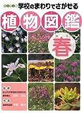 ハンディ版 学校のまわりでさがせる植物図鑑 春
